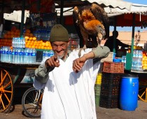 Meet Marrakech