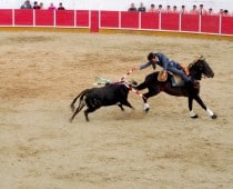 Portugals Bullfighting Festival. Not What We Expected.