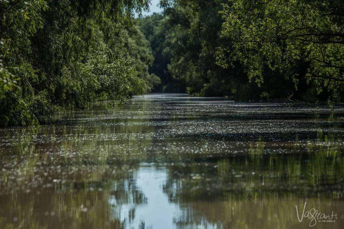 Danube Delta Romania