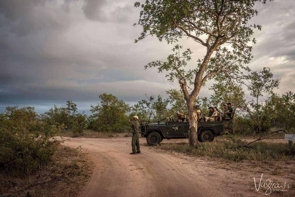 Evening Game Drive - Africa on Foot Safari Lodge
