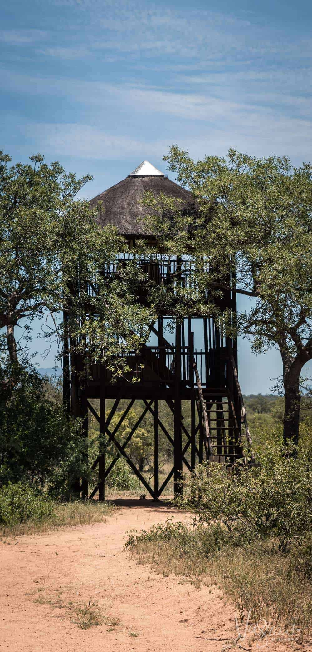 Experience unique safari accommodation in your own private tree house at Africa on Foot