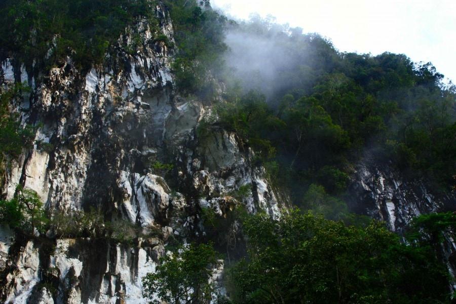 Gunung Mulu National Park, Borneo