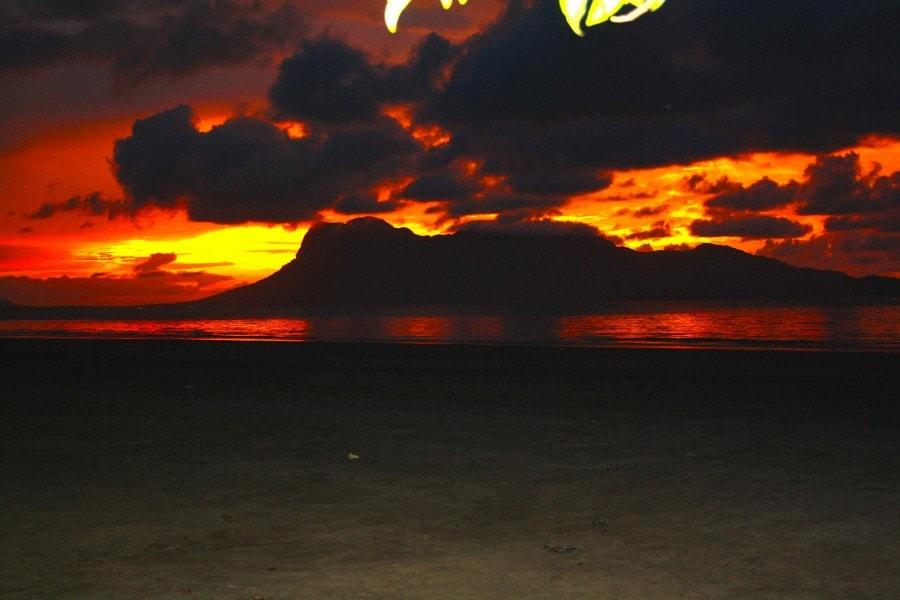 Sunset -Bako National Park, Sarawak Borneo